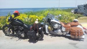 Eagle Adventure Tours - Harley Tour USA (6)