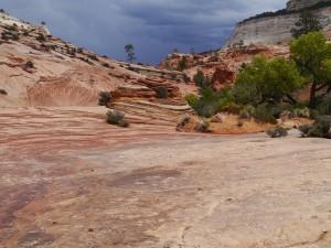 Eagle Adventure Tours - Muscle_Car_Bonneville_Canyonroute (22)